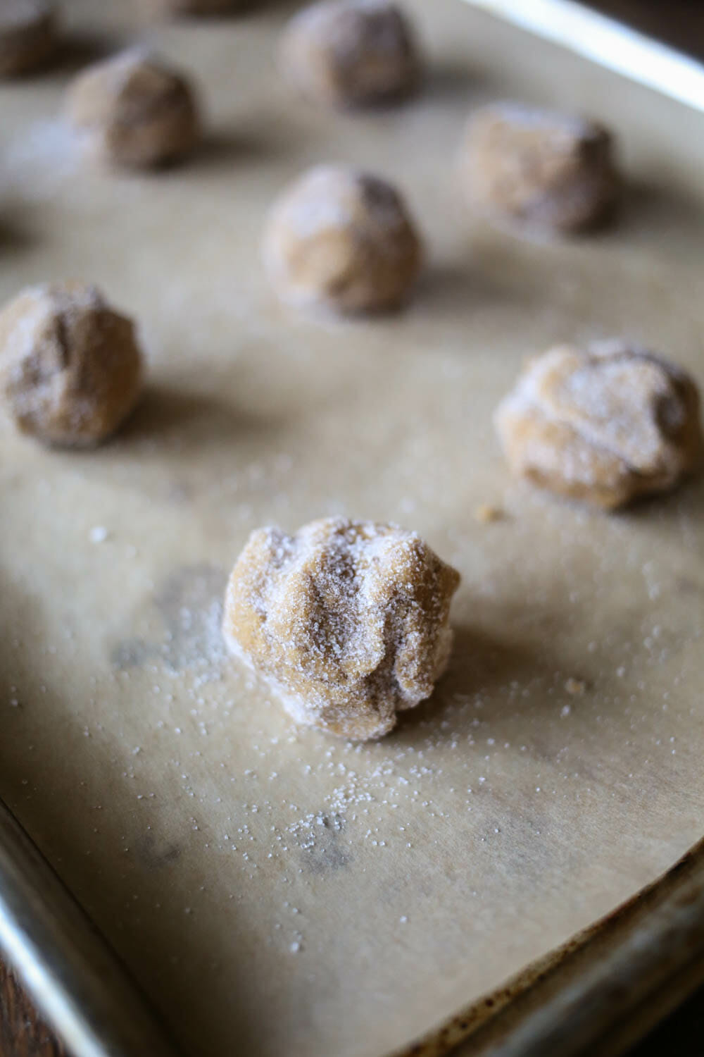 ginger spice cookie dough rolled in sugar