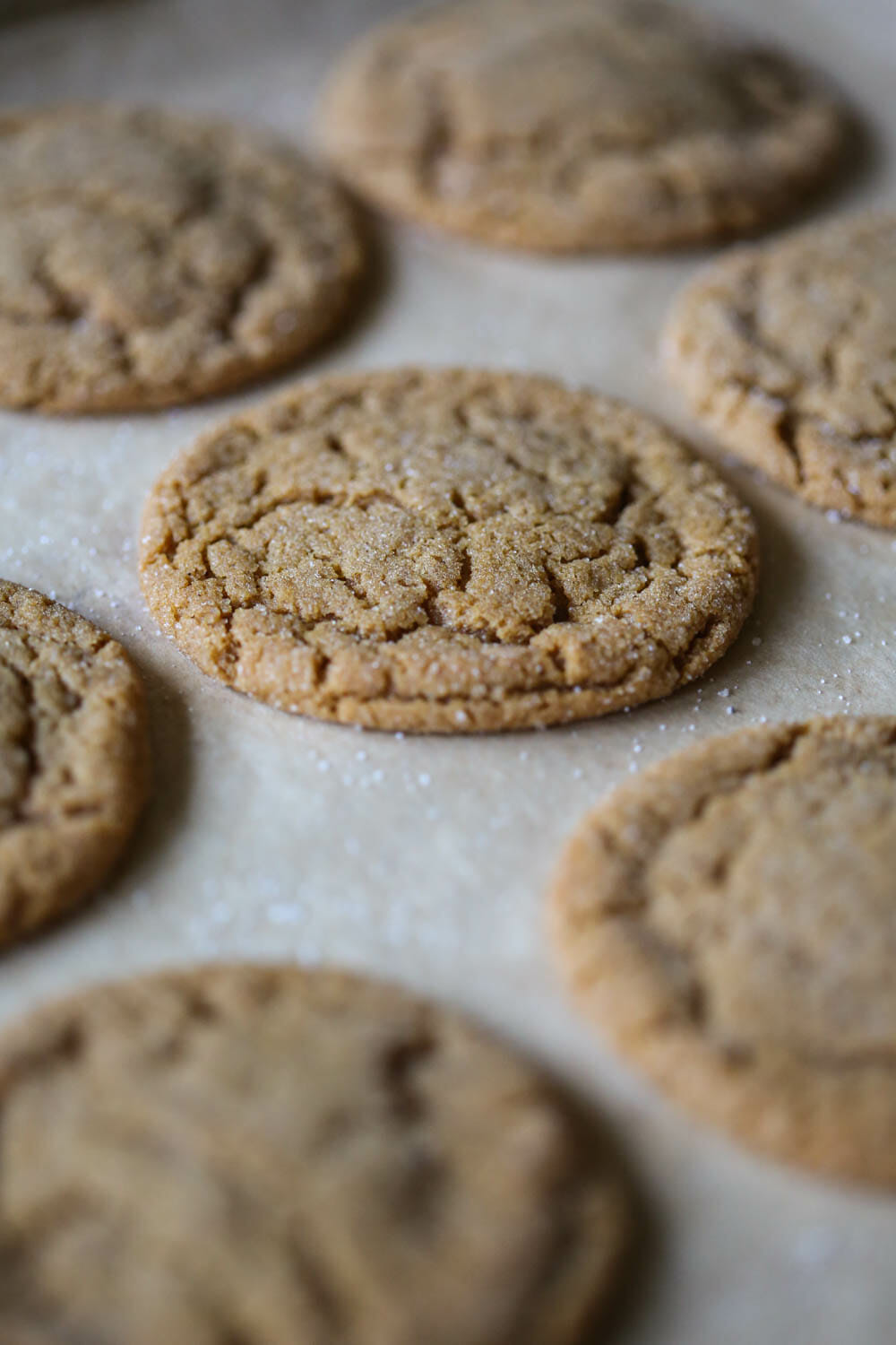 closeup of ginger spice cookies