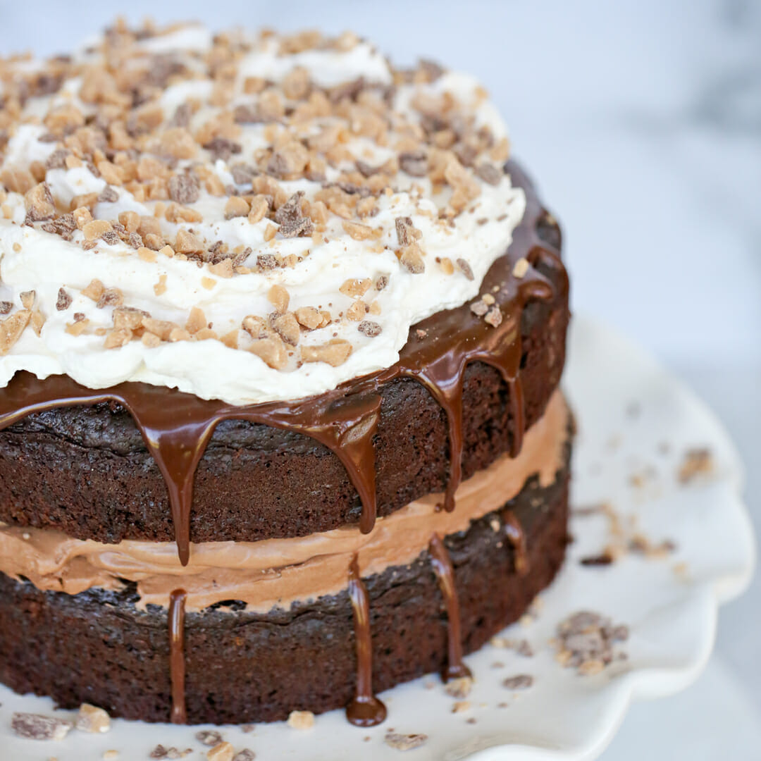 chocolate mousse cake on cake stand