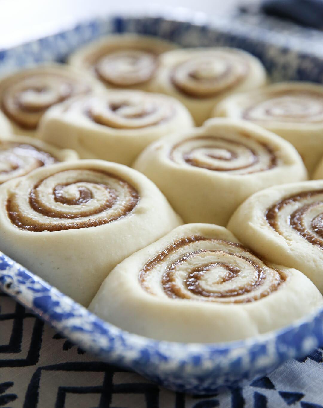 Plump Cinnamon Rolls in pan