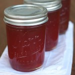 Introduction to Home Canning and Preserving