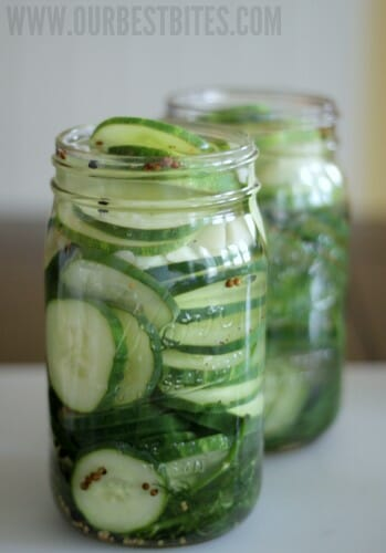Refrigerator Pickles - Our Best Bites
