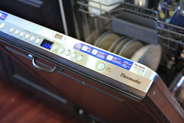 Internal Dishwasher Controls