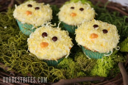 Chicky-Cupcakes