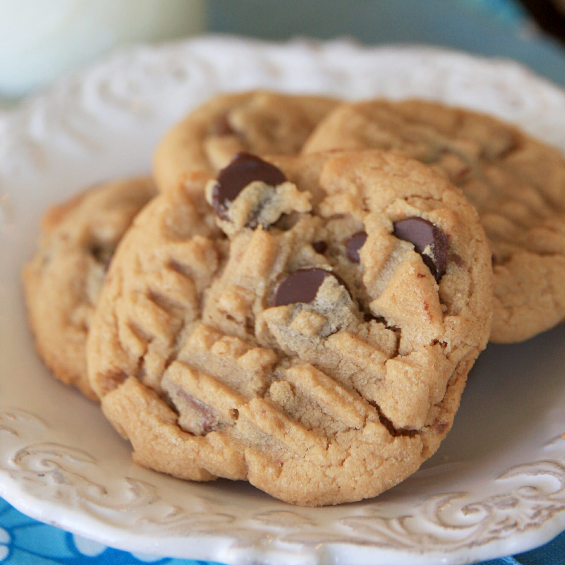 Peanut-Butter-Chocolate-Chip-Cookies-sq.jpg