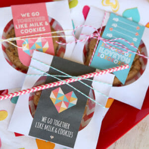 Valentine CD Envelope Treat Pouches