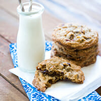 CHOCOLATE_cranberry_coconut_cookies-1 square