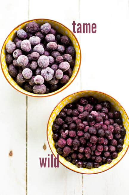 wild and regular blueberries