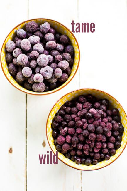 wild and regular blueberries