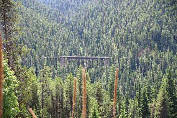 Train tressle