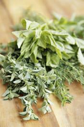 Fresh Herbs intro