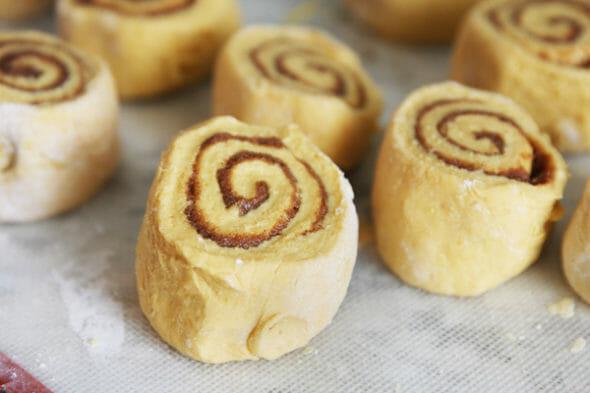 Pumpkin Cinnamon Rolls_cut rolls