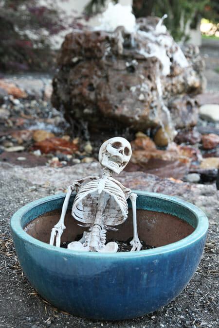 Skeleton Pot