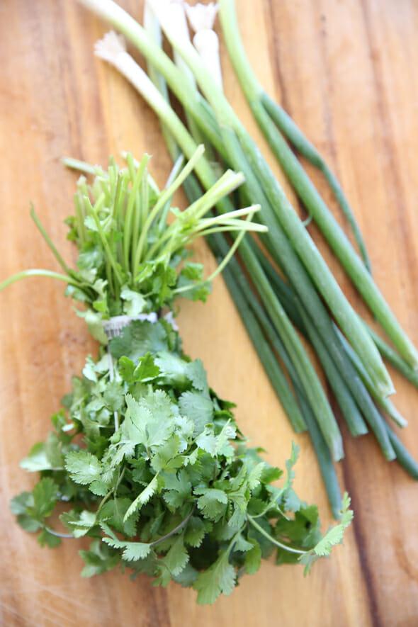 Cilantro and Green Onions