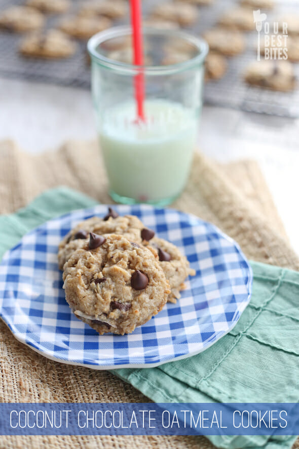 Chewy Coconut Chocolate Oatmeal Cookies