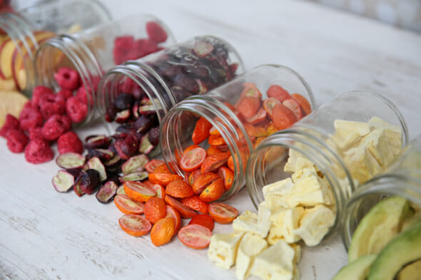 Food Preservation By Freeze Drying