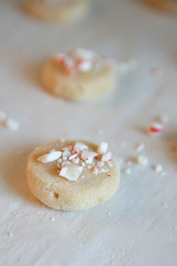 Peppermint Sugar Cookie Dough