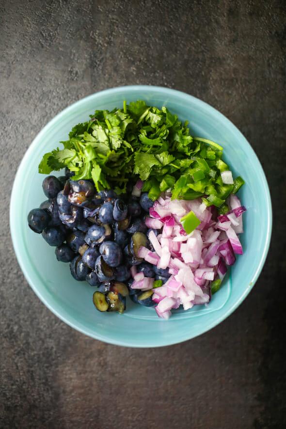 Blueberry Salsa-2