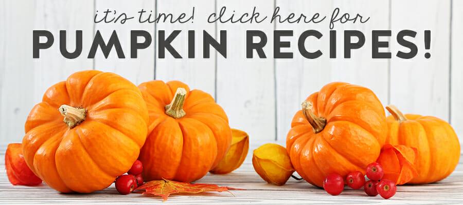 pumpkin meta slider