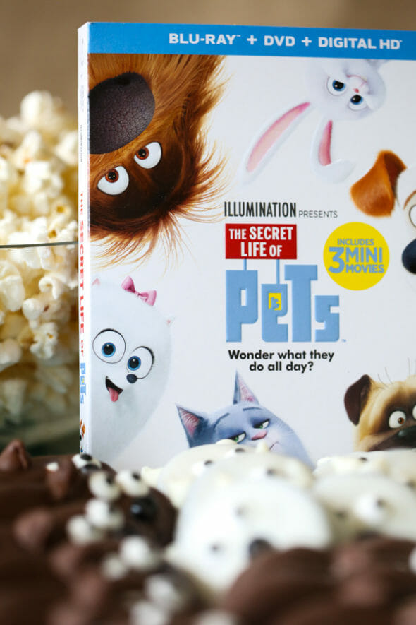 The Secret Life of Pets-21
