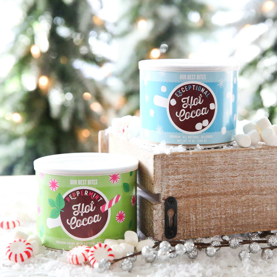 Great Holiday Gift Idea