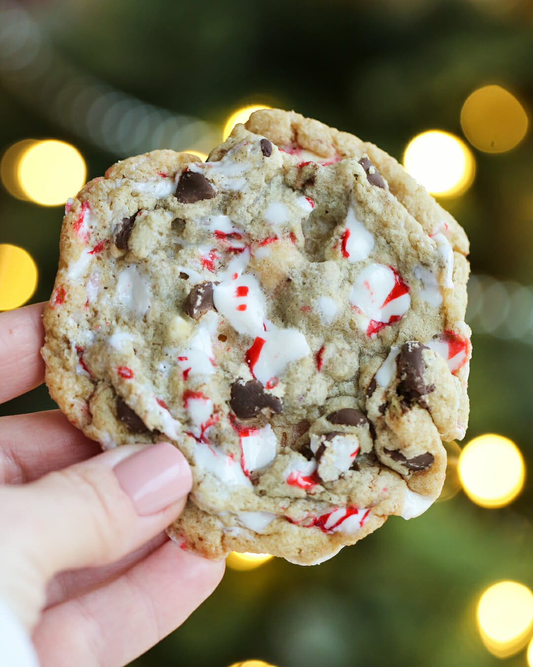 Peppermint Candy Cane Cookies