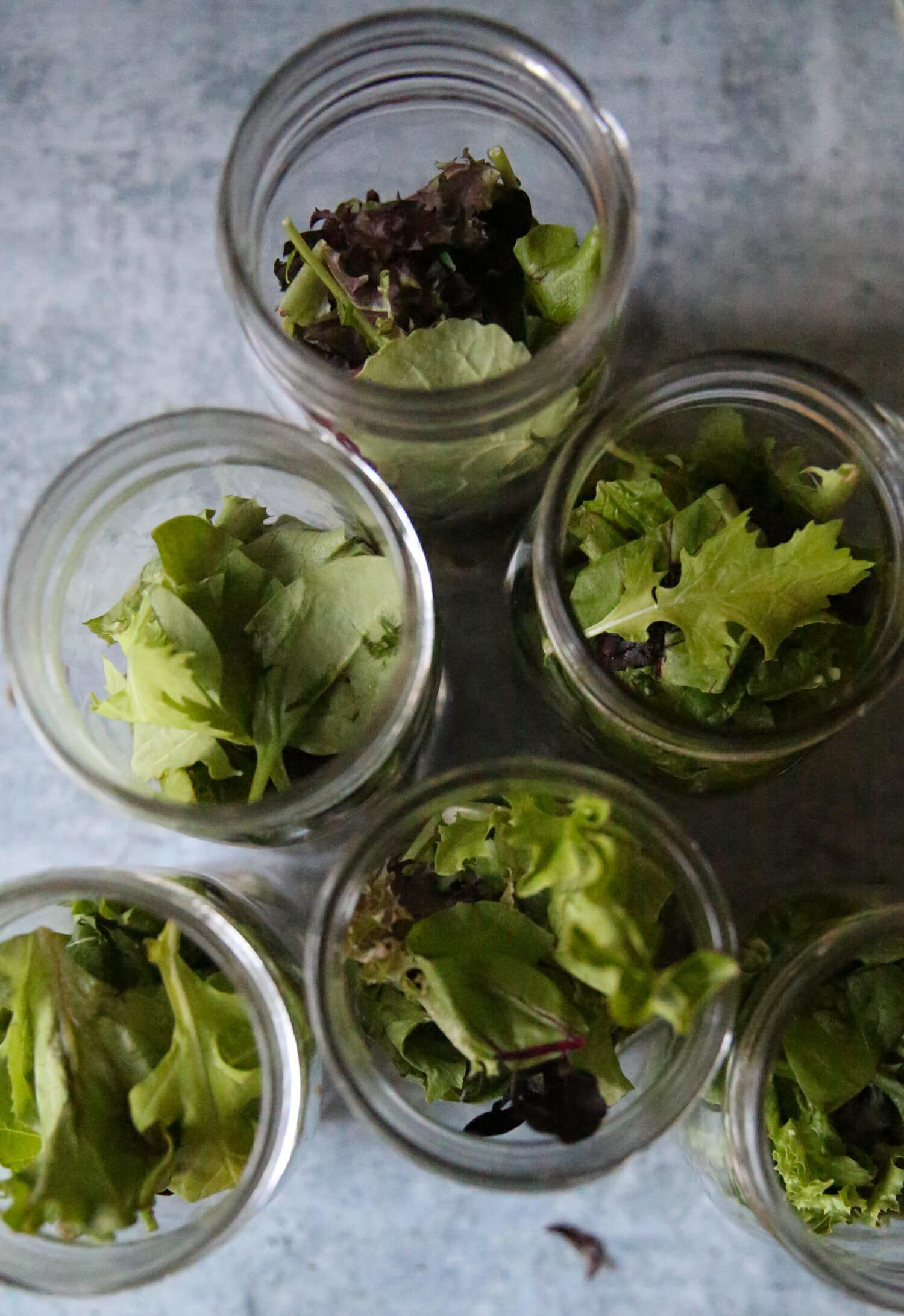 salad greens in jars