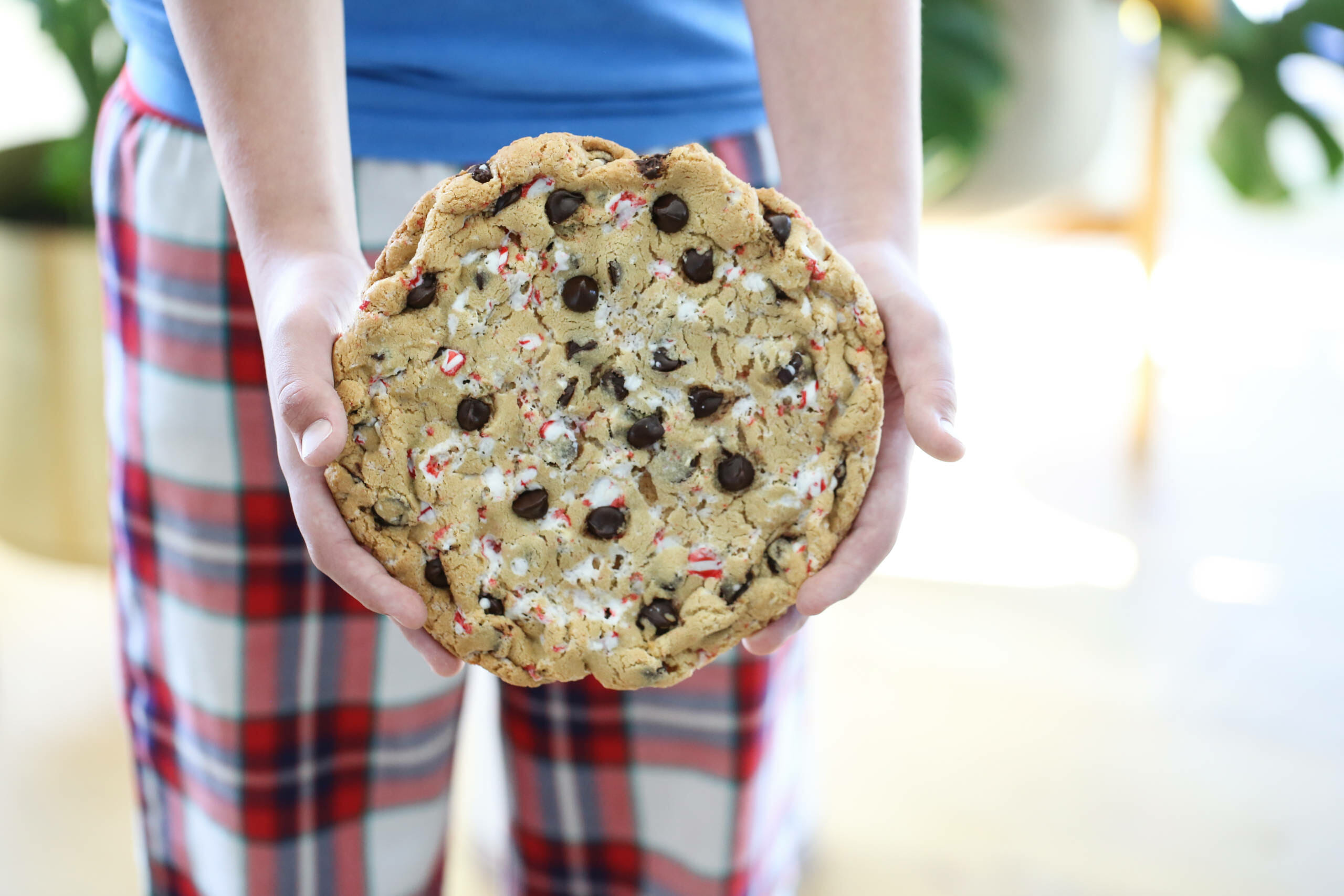 Giant Chocolate Chip Candy Cane Cookie
