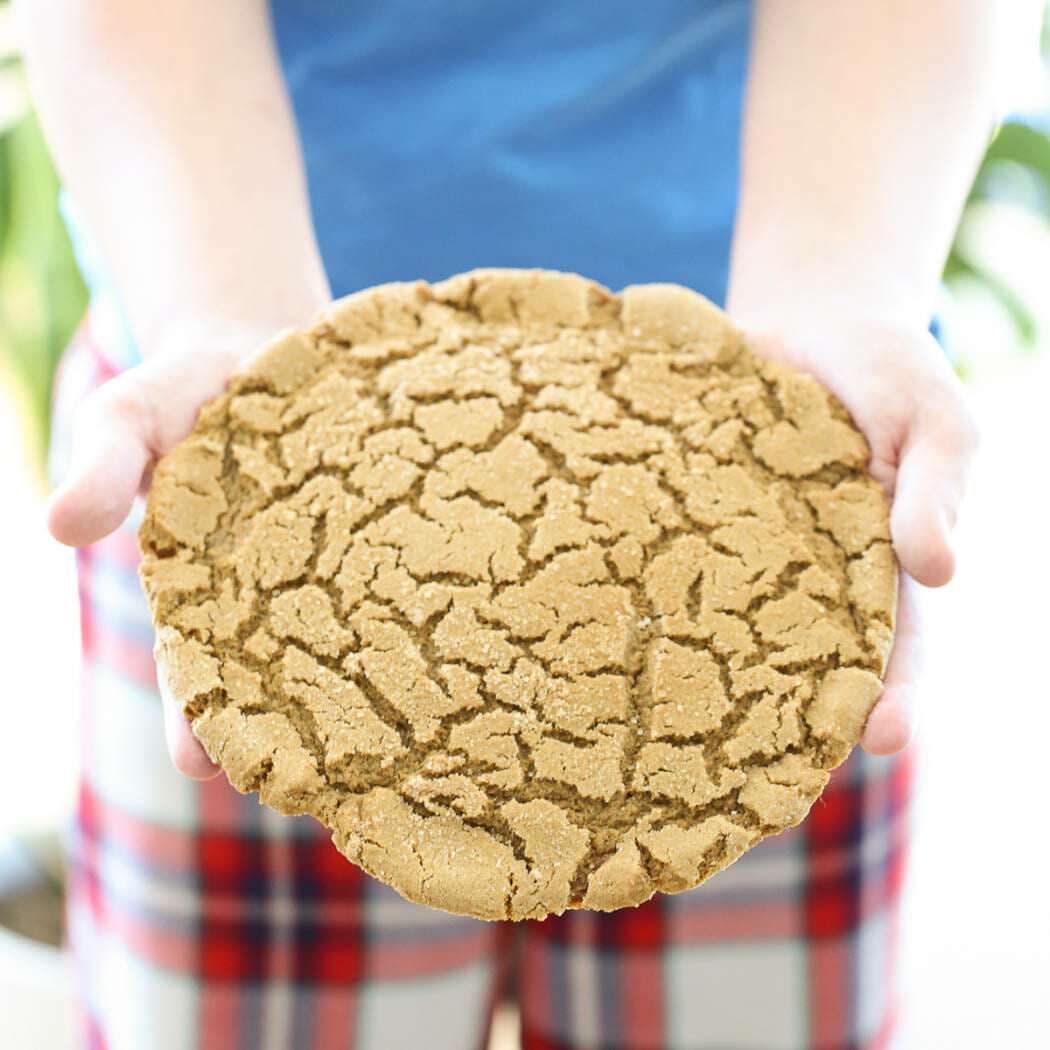 giant gingersnap cookie!