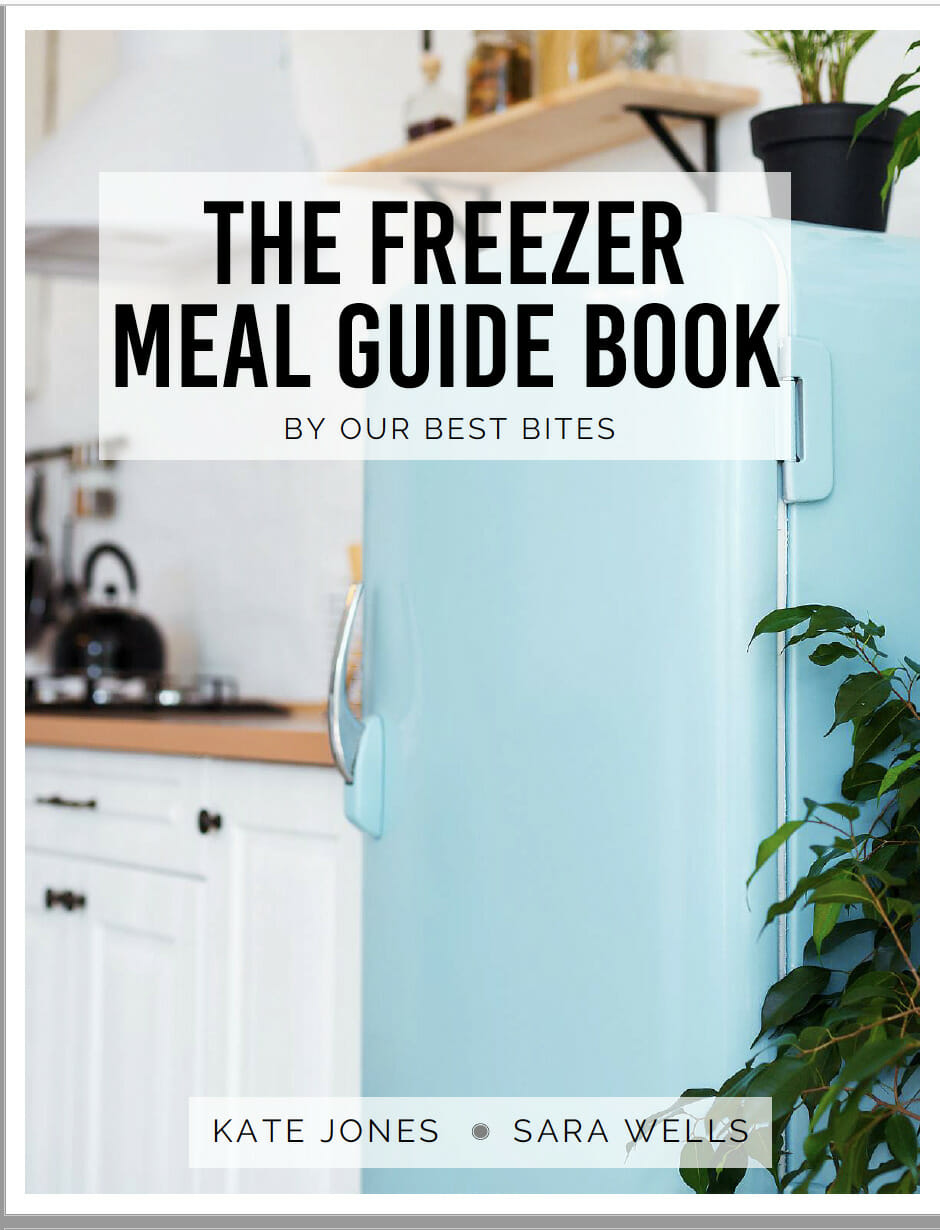 screenshot of freezer meal guide book
